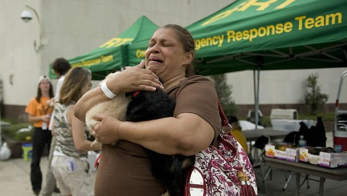 woman holds cats at natural disaster shelter