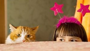 Cats And Kids: Tips For Keeping Both Safe