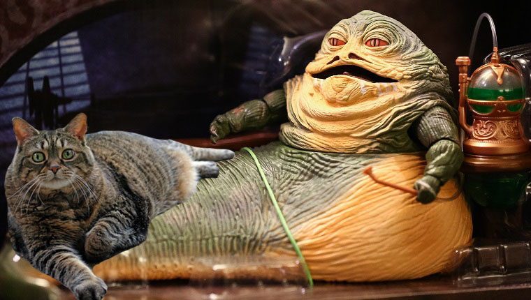 fat cat with jabba the hutt