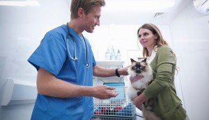 7 Secrets To Getting The Red Carpet Treatment At The Vet