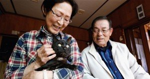 Cat lost in 2011 Japan tsunami finally comes home