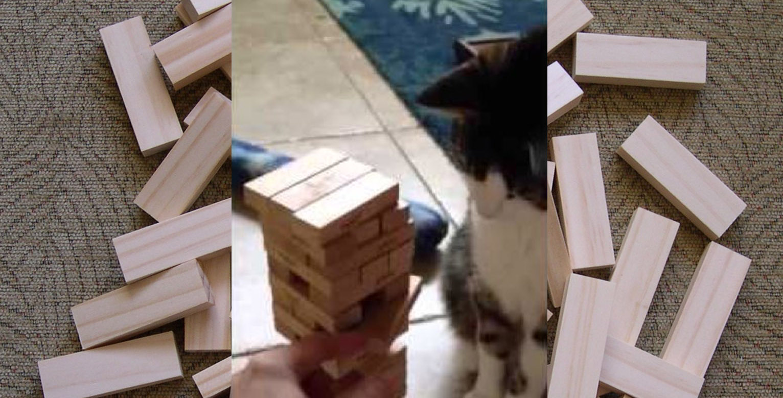 Cat Block Game