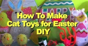 How To Make Cat Toys For Easter [DIY]