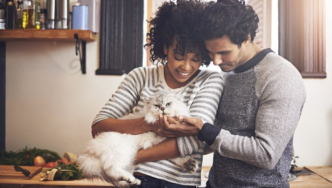 dating couple with cat