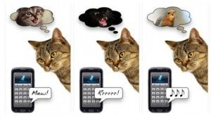 5 Ridiculously Silly Cat Apps To Entertain You And Your Cat