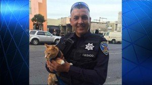 Orange Cat Saves Suicidal Jumper In San Francisco