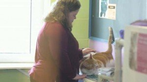 Young Adults With Developmental Disabilities Read To Shelter Cats: Everybody Wins