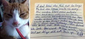 Cat Came Home With This Note Attached To Him