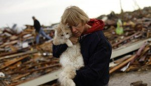 5 Steps For Keeping Your Cat Safe During A Tornado
