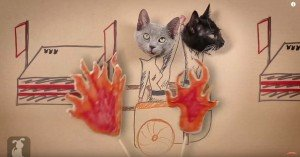 "WATCH ""The Hunger Games"" (As Told By Cats)"