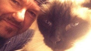 Ricky Gervais Speaks Out To Make Cat Declawing Illegal In New York