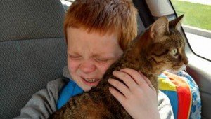 Boy With Autism Reuniting With His Lost Cat Will Warm Your Heart