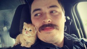 Police Officer Rescues Adorable New Kitten Partner Named Squirt