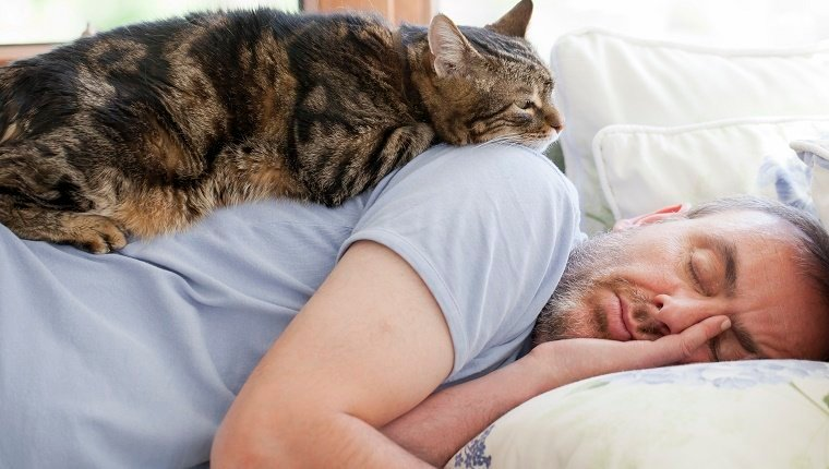 man and old cat: have faith in - trusting & sleeping