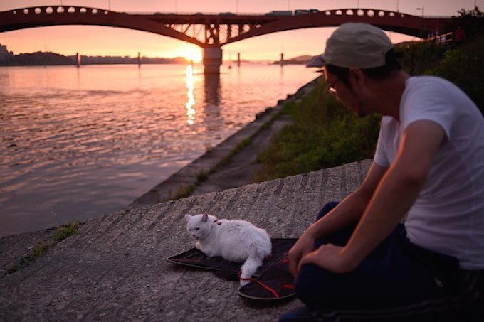 In a photo taken on July 21, 2015 a man sits with his pet cat on the north bank of the Han river before the Seongsan bridge, during an evening in Seoul. AFP PHOTO / Ed Jones (Photo credit should read ED JONES/AFP/Getty Images)