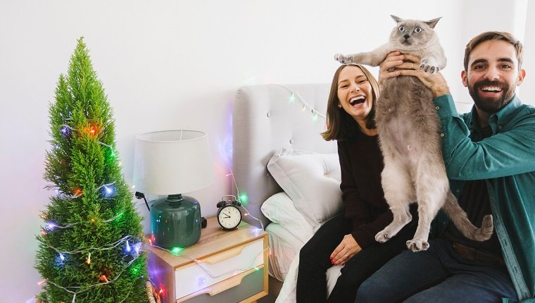 Laughing couple with their cat at home