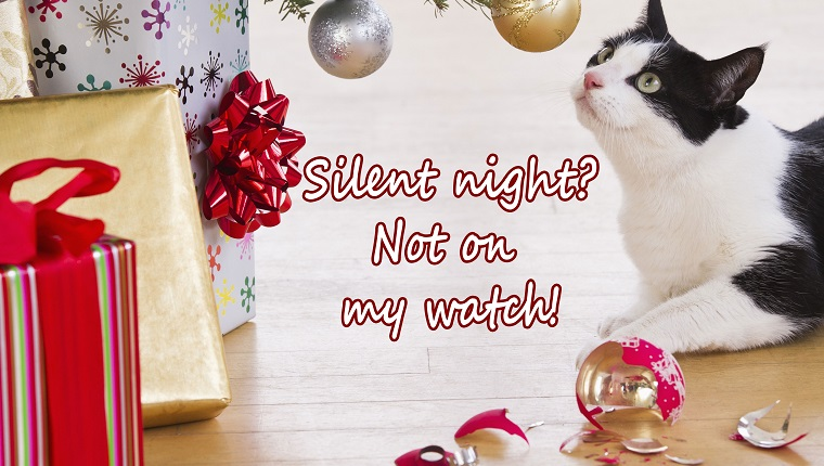 "cat christmas e-card. cat sniffs ornaments. reads ""silent night? not on my watch!"""