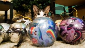 Christmas Loving Cats, Kitties & Kittens [PICTURES]