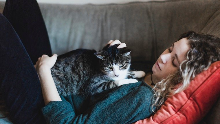 pet sitter petting a cat during professional pet sitters week