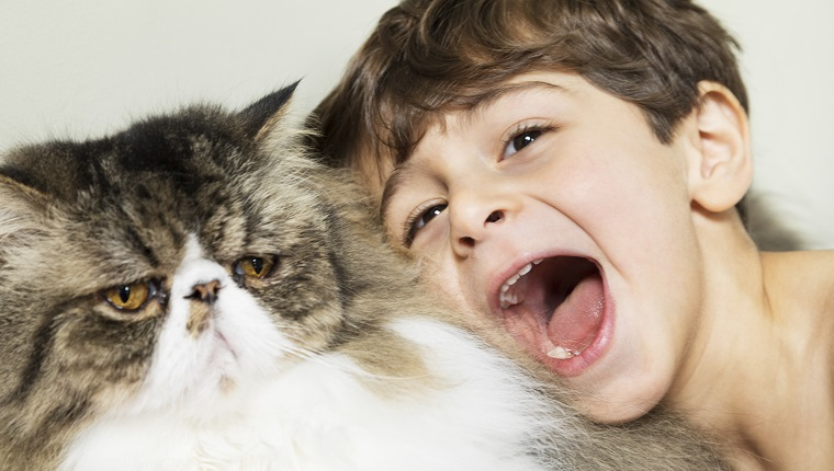 A close up shot of a little boy yelling in a Persian cat's face. The cat is looking away as if he's trying to ignore the disturbance. The little boy has brown hair and brown eyes and is looking at the camera. The cat has yellow eyes and tabby fur. A cute interaction between a boy and his very tolerant pet.