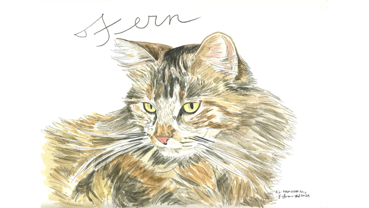 gene's watercolor of a cat named Fern