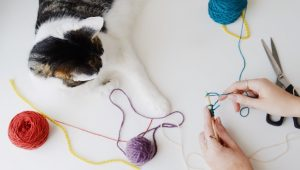 Crochet Month: 5 Eye-Catching, Cat-Themed Crochet Projects