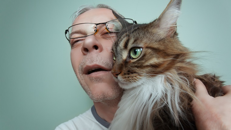 A dishevelled and sickly looking man hugging his beautiful Maine Coon Cat.